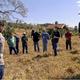 Manejo de pastagem melhora rentabilidade de pecuaristas de Goiás