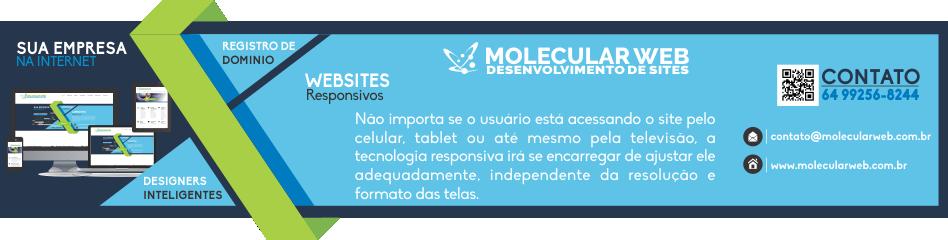Esta imagem pode conter informações sobre Molecular Web - Desenvolvimento de Sites -