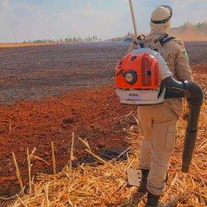 Incêndio de grande proporção mobiliza bombeiros e produtores
