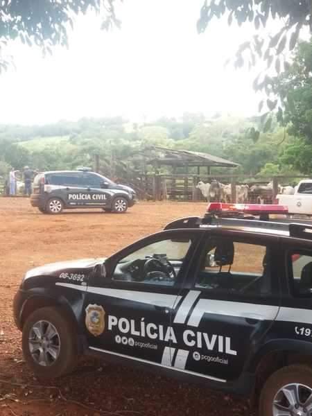 Ação conjunta das polícias recupera gado furtado em MG