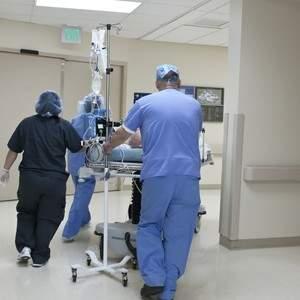 Para enfrentar Coronavírus, Ministério da Saúde deve convocar médicos-veterinários